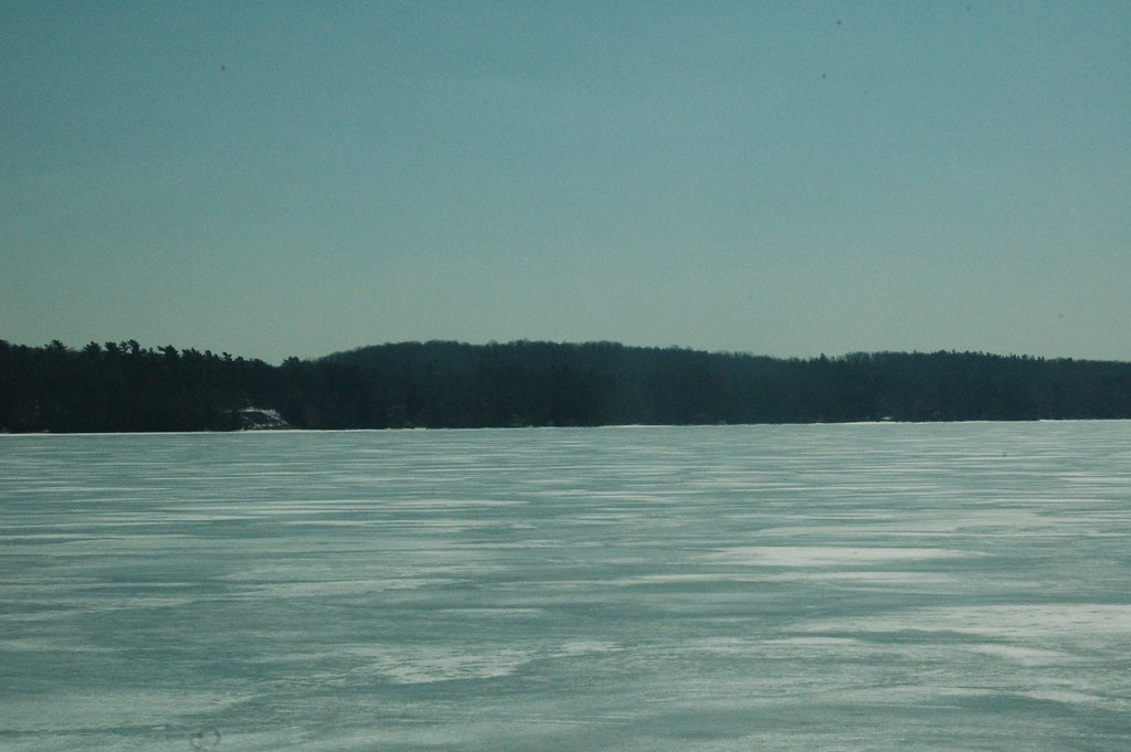 Chemong Lake And The Surrounding Area
